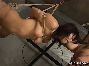 trussed up to a wire and deepthroating on the fellas